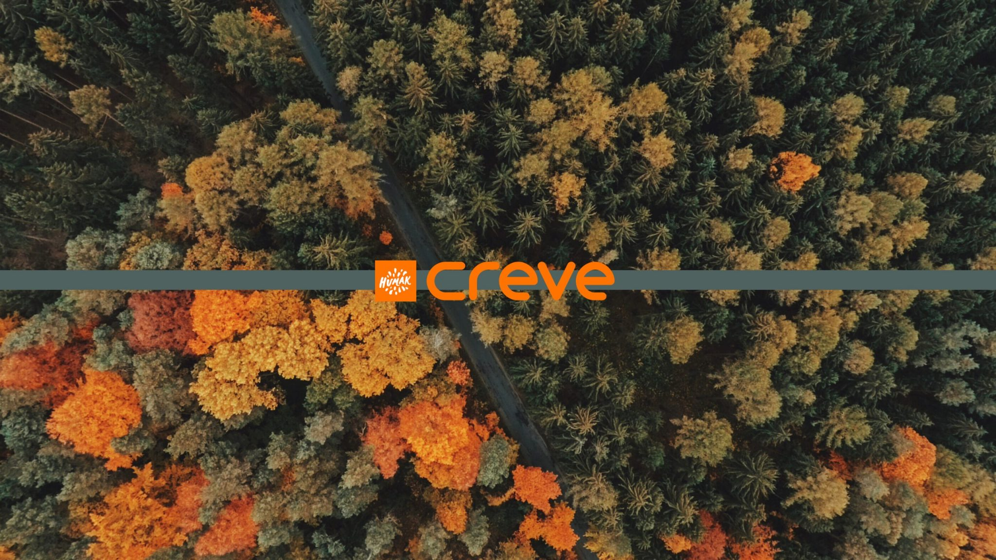 A picture of an autumnal forest viewed from above. A textual Creve logo superimposed in the middle of the image.